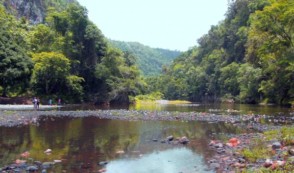 By Wilber Ortega. Mirrors of Yumuri´s River; another view where we appreciate the human scale getting lost among the shades of vegetation.