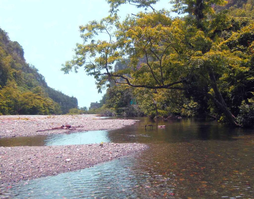 The Yumurí River II